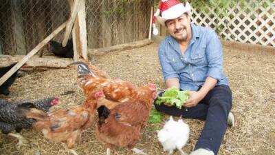 Con regalos y piñata, las gallinas del Feo tiene su posada o al revés Las gallinas del Feo tienen su posada con regalos y piñata