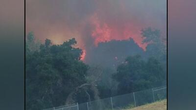 Bomberos combaten un fuerte incendio forestal en el área de Riverside