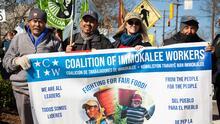 Trabajadores del campo exigen mejores condiciones de trabajo en Carolina del Norte