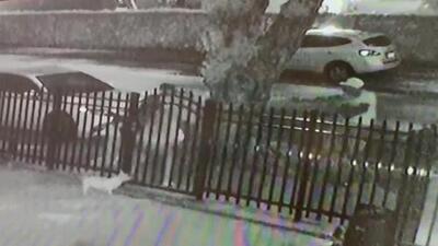 """""""Es un hombre sin misericordia"""": familia sobrevive a una ráfaga de balas cuando un presunto ladrón los enfrenta"""
