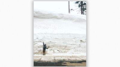 En fotos: California padece bajo el frío intenso y pronostican más lluvia y tormentas de nieve