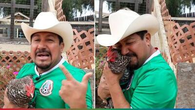 La Gallina Vidente continúa su racha ganadora y la Selección de México le sigue el paso