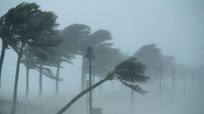 Lo que podría ocasionar Dorian en el sur de Florida de acuerdo con el último pronóstico del Centro Nacional de Huracanes