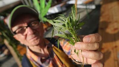 Por qué los mayores de 50 consumen cada vez más marihuana