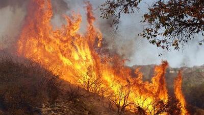 FEMA ofrece ayuda para los afectados por los últimos incendios en California