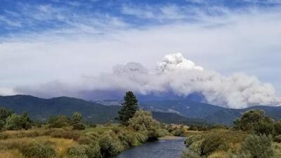 El incendio forestal Walker crece a más de 43 mil acres en el condado Plumas, provocando evacuaciones obligatorias