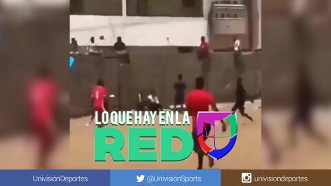 Duele de solo verlo: un niño es golpeado por un pelotazo y cae de su improvisada tribuna