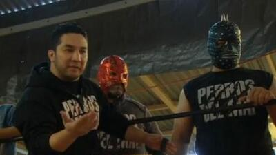 Perro Aguayo Jr. retó a un abusador a luchar contra él