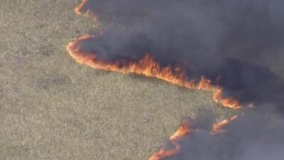 El incendio de maleza en los Everglades pudo haber sido ocasionado por un rayo, según el Servicio Forestal de Florida