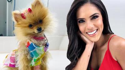 Francisca Lachapel compadece a la nueva integrante de Despierta América, pues sabe lo que cuesta ser estrella