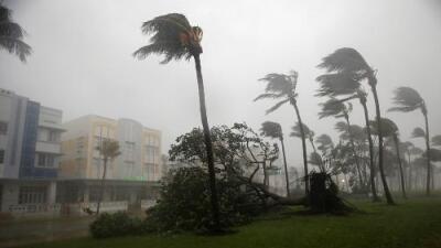 Las reacciones ante un desastre: seis lecciones del huracán Irma
