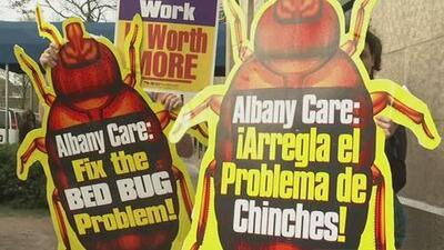 Protestan por infestación de chinches en el centro para adultos mayores Albany Care en Evanston
