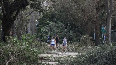 ¿Qué hacer con todo esto? Florida se enfrenta a las montañas de desechos de Irma