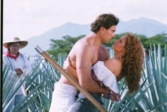 Las telenovelas más ganadoras
