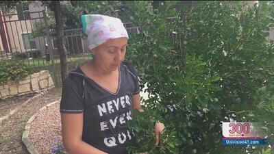Liliana lucha contra el cáncer de seno y pide ayuda a la comunidad