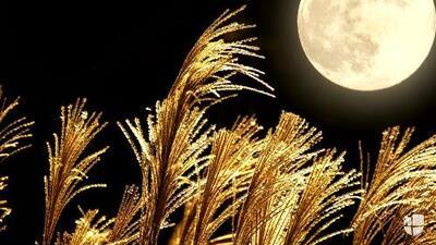 Horóscopo del 30 de marzo | Vienen horas de cambios impactantes