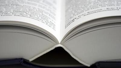 Las nuevas palabars del diccionario en español