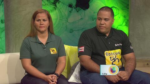 Boricua Taxi busca ofrecer servicios de transporte local mediante una app