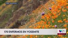 Al menos 170 personas reportan haber sufrido problemas gastrointestinales tras visitar Parque Yosemite