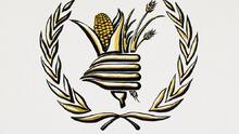"""El Programa Mundial de Alimentos de la ONU recibe el Premio Nobel de la Paz """"por sus esfuerzos en la lucha contra el hambre"""""""