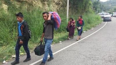 Migración a contravía: decenas de miles de guatemaltecos viajan a Honduras para trabajar en la agricultura
