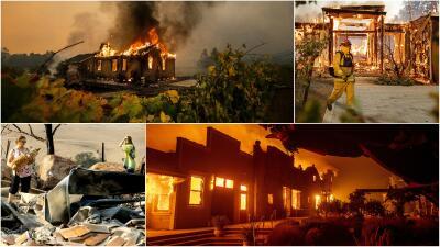 Viñedos calcinados y casas en cenizas: esta es la destrucción que dejó el fuego en el norte de California