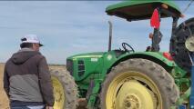 Trabajadores del campo se exponen a accidentes, riesgos y lesiones