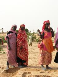 Tidjikja, Tagant, Mauritania, 15th October 2005: Women from agricultural cooperative posing for the camera