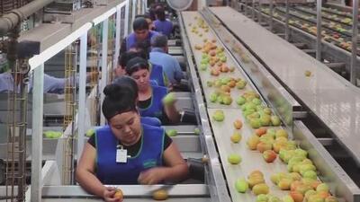 Los impactos económicos para los ciudadanos si se aplican nuevos aranceles a importaciones de México