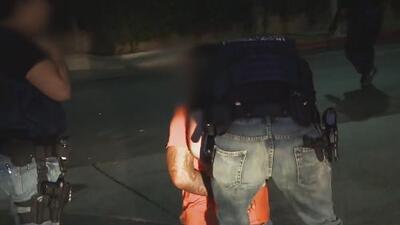 Revelan nuevos detalles sobre la base de datos de pandilleros que tiene la policía de Chicago