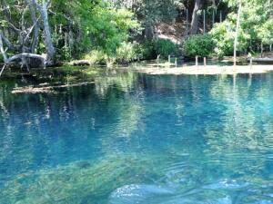 Esto es lo que debes hacer para prevenir contagios de bacterias en los lagos o ríos