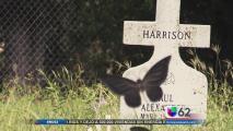 Víctimas de la calle: ¿Cómo mueren los indigentes de la capital texana?