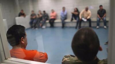 Red de Respuesta Rápida confirma arrestos colaterales de ICE en el Área de la Bahía