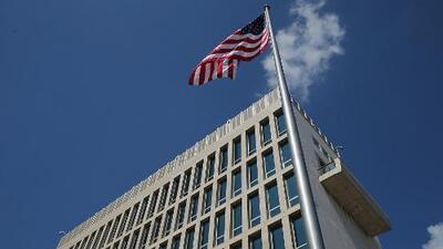 Grillos pudieron causar los 'ataques sónicos' a diplomáticos de EEUU en Cuba, según un estudio