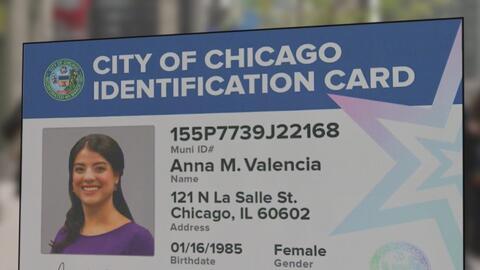 ¿En qué va el proyecto de identificación municipal en Chicago?