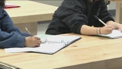 Buscan multar a los padres de niños que hacen bullying