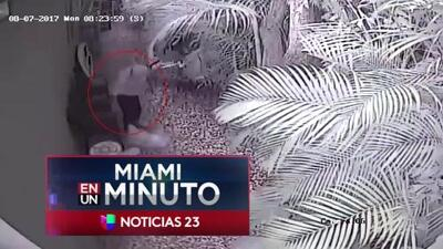 'Miami en un Minuto': Queda captado en cámara cómo un hombre entra a una casa para robar