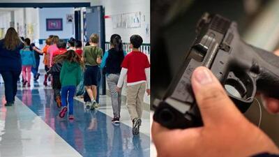 Aprueban propuesta de ley para darle armas de fuego a los maestros