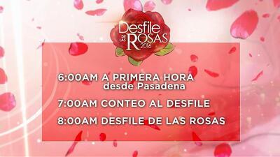 Siga el Desfile de las Rosas con Univision