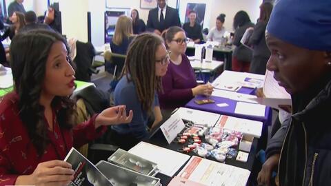 Publican nuevas medidas y recomendaciones para combatir el narcotráfico en Nueva York