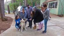 El reencuentro de esta familia con su perro, que se había perdido en los incendios de California