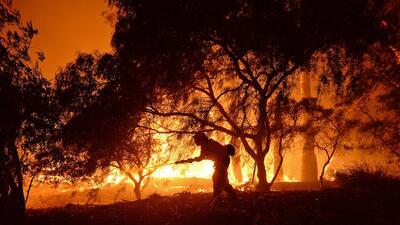 Incendios forestales causan estragos en el oeste de Estados Unidos