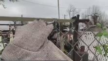 Tormenta provoca destrozos en caminos y viviendas del condado de Medina