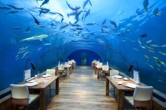 Así se ven los 9 restaurantes más extravagantes del mundo