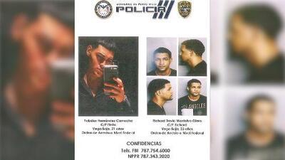 Armados y peligrosos: buscan a sospechosos de asesinato de joven estudiante de Utuado