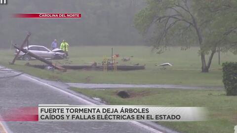 Se confirmó tornado en Hillsborough y aunque no tocó tierra dejó estragos