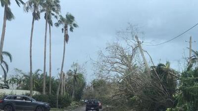 Dorado (Puerto Rico) después del paso del huracán María: últimas noticias