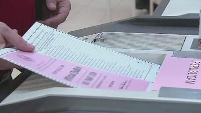 Por primera vez la Organización de Estados Americanos enviará observadores para monitorear las elecciones en Estados Unidos