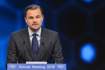 Leonardo DiCaprio dona 15 millones de dólares al medio ambiente