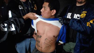 Central American gangs like MS-13 were born out of failed anti-crime policies